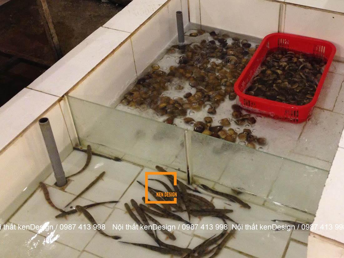 huong dan cach thiet ke be ca nha hang chuan kich thuoc 2 - Hướng dẫn cách thiết kế bể cá nhà hàng chuẩn kích thước