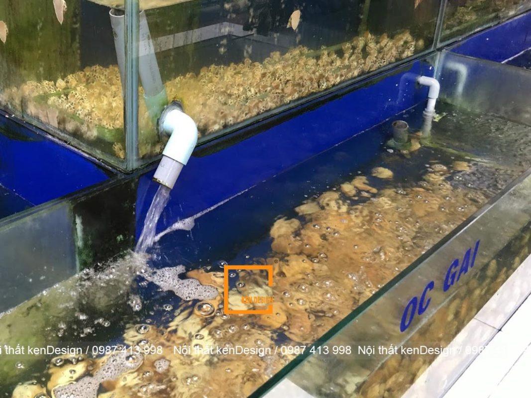 huong dan cach thiet ke be ca nha hang chuan kich thuoc 6 1067x800 - Hướng dẫn cách thiết kế bể cá nhà hàng chuẩn kích thước